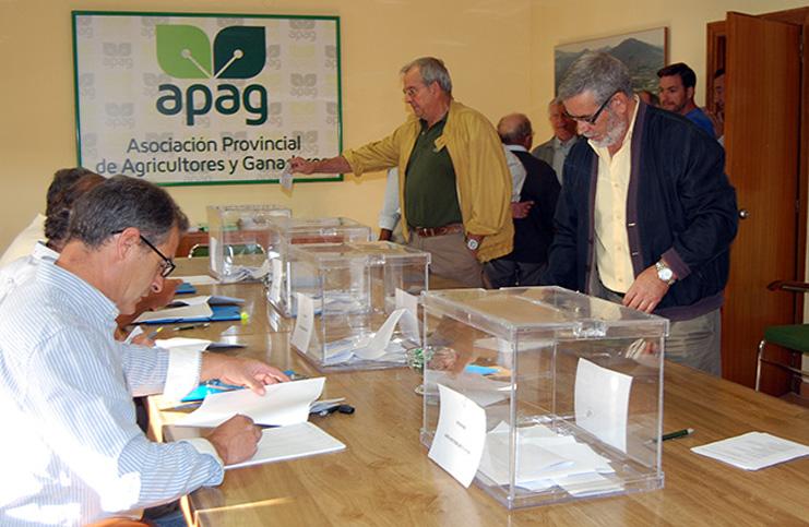 elecciones-apag