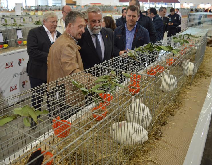 feria-avicultura-2