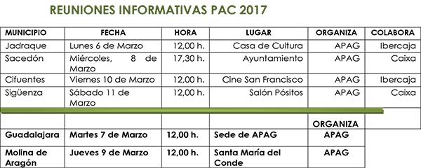 cuadroreunionesPAC17