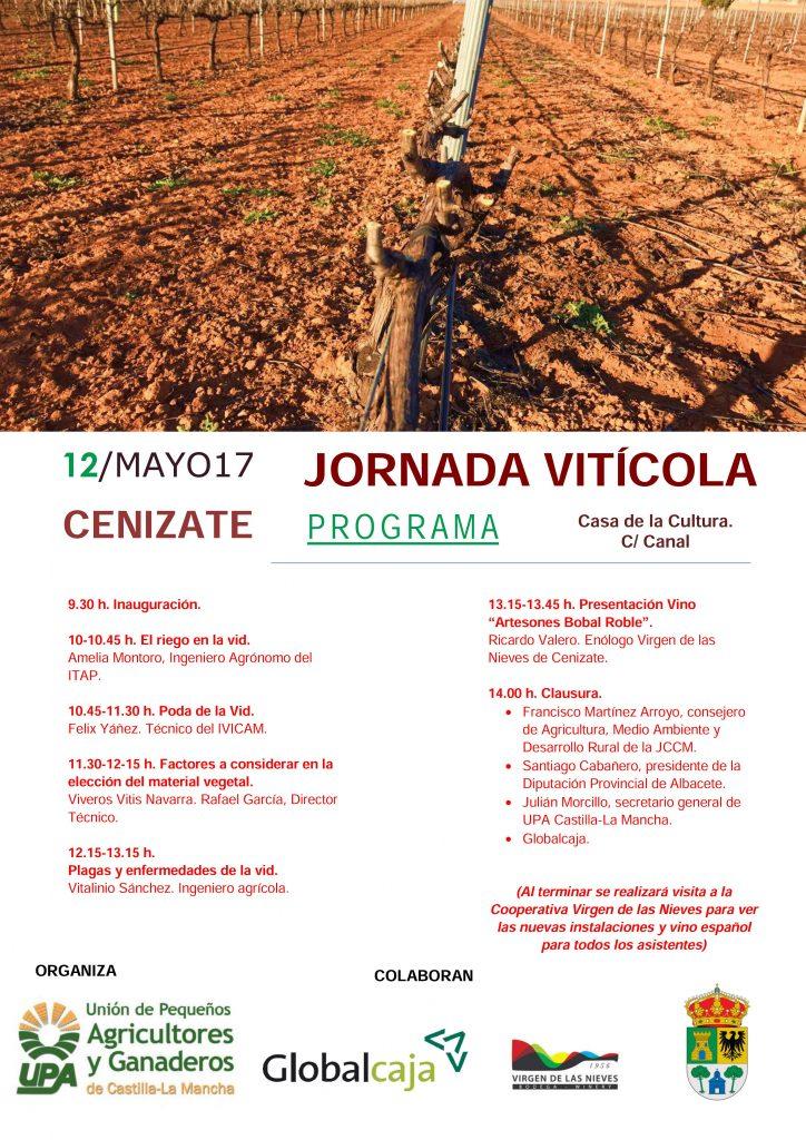 Cartel-Jornada-Cenizate_20170512-724x1024