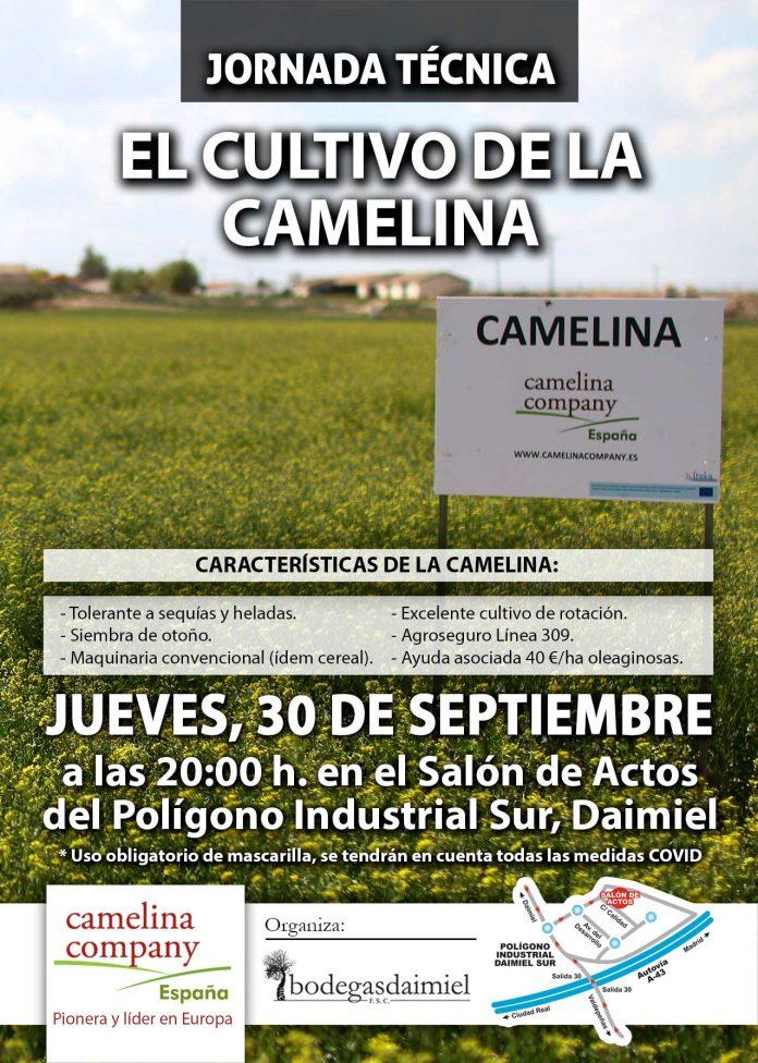 Camelina